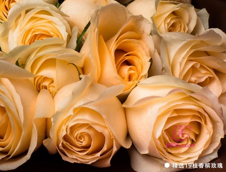 今生幸福—快送鲜花网|石家庄鲜花|订花网|情人节鲜花预订|异地订花