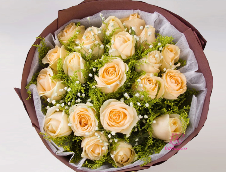 似水柔情—快送鲜花网 速递送花网 异地送花 鲜花订购 中国鲜花专递网