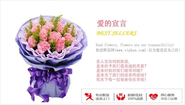 爱的宣言—快送鲜花网|康乃馨花束|教师节定花|异地送鲜花|网上买花哪个网站好