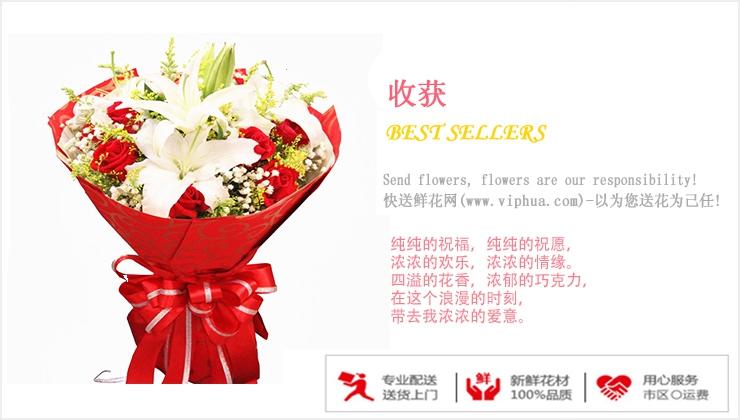 收获—快送鲜花网|情人节鲜花速递|异地订花|同城快递鲜花|网上订鲜花|节日鲜花