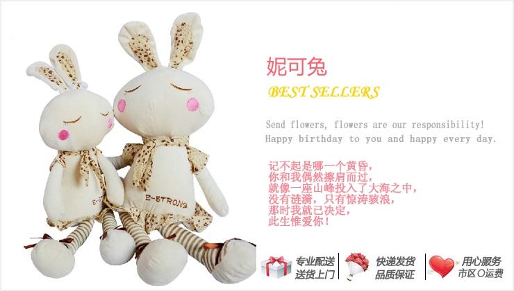 妮可兔—快送鲜花网|异地送礼物|毛绒玩具|网上订购礼品|情人节个性礼品推荐