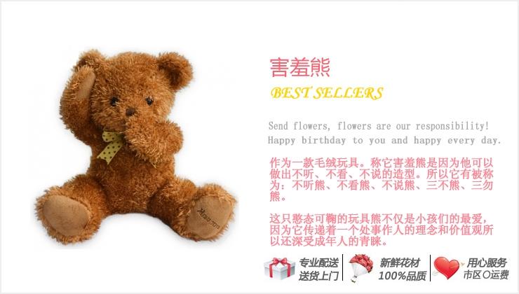 害羞熊—快送鲜花网 毛绒玩具 卡通小熊 泰迪熊 网上购买情人节礼物